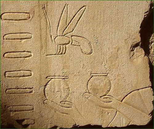 AS019_Egypte-Pabasa_recolte-de-miel1