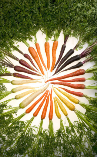 Carrots_of_many_colors-copie-1