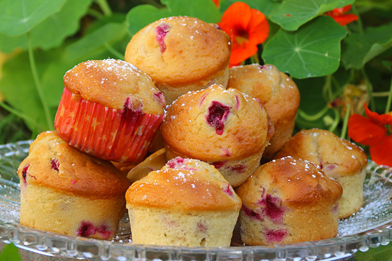 muffins-canneberges-1w