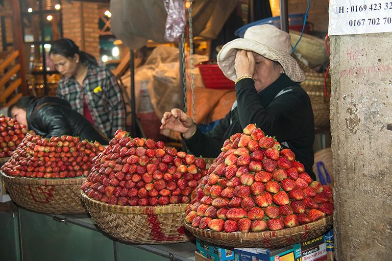 voyage au Vietnam20160419_Vietnam-JP_Dalat_5134w